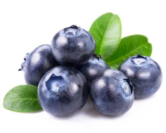 blueberi untuk buah pinggang
