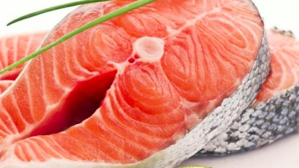 ikan salmon sebagai sumber nutrisi