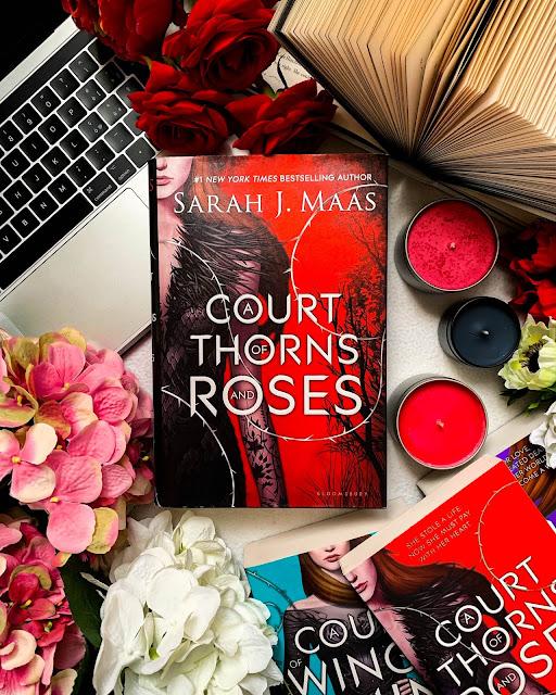 Libro La corte di rose e spine