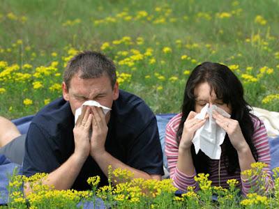 pareja de alérgicos al polen · www.conlosochosentidos.es