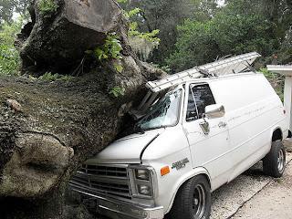 silversmith lane water oak falls on van