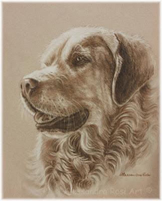 custom pet portraits,Dog Portrait