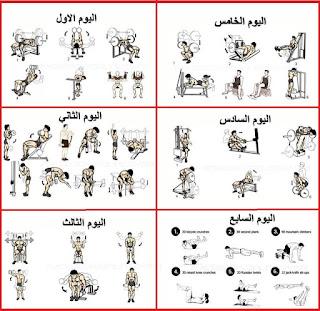 أفضل تمارين كمال أجسام للمبتدئين
