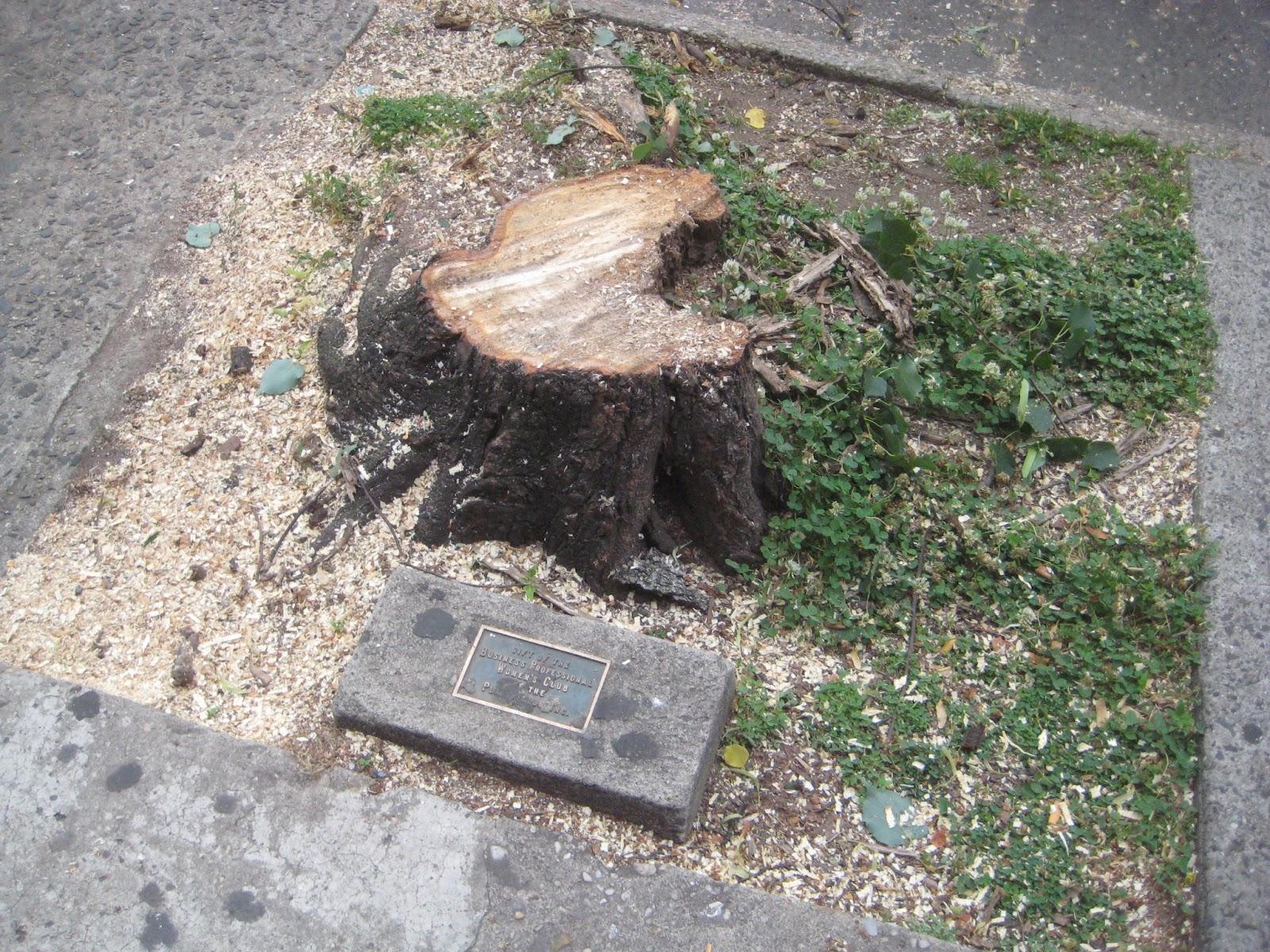 Plaintalker Ii Tree Plaques Tell History