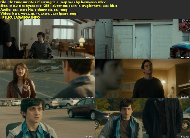 Descargar The Fundamentals of Caring Subtitulado por MEGA.