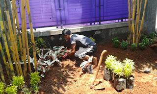 Tukang Taman di Cilodong,Jasa Pembuatan Taman di Cilodong,Jasa Tukang Taman Mura dan Profesional di Cilodong