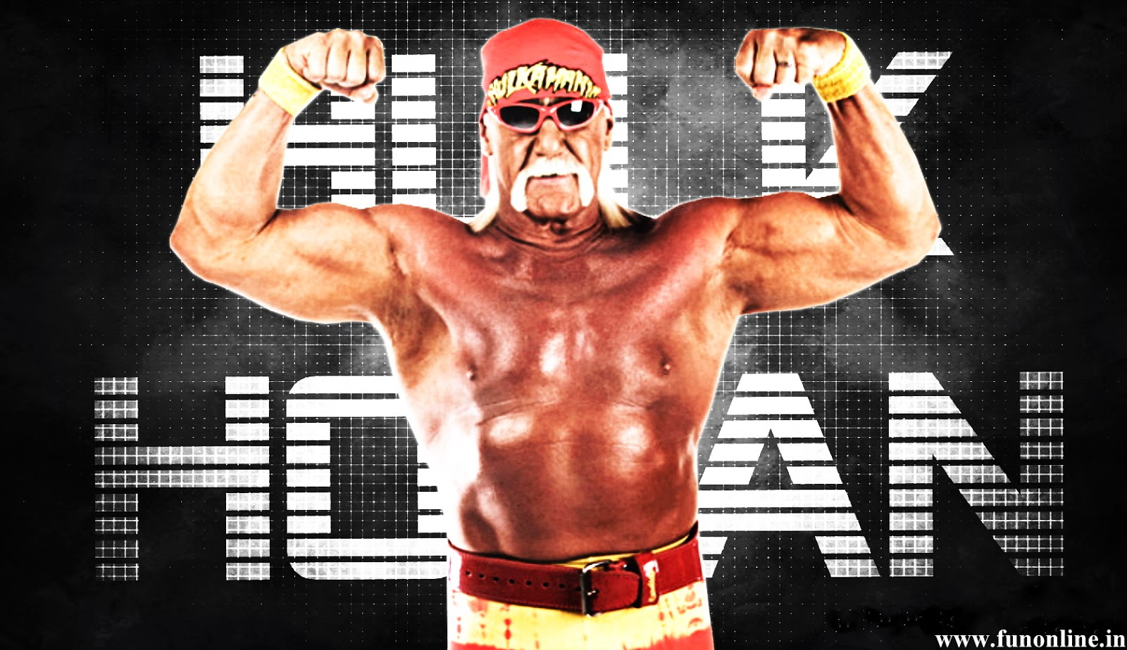 Hogan Hulk Hulk Hogan 2014 Hd Wallpapers Wrestling