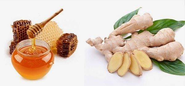 Honey Ginger Combination Treats Bacterial Infection