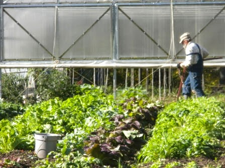 Keppers' Pottery & Produce: Moving the mobile high tunnel