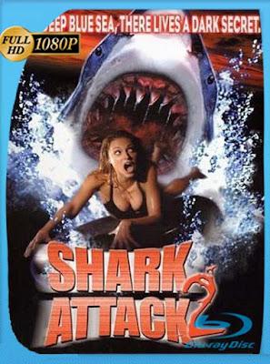 Tiburón 2 El Asesino Regresa (2000)HD[1080P]latino[GoogleDrive] DizonHD
