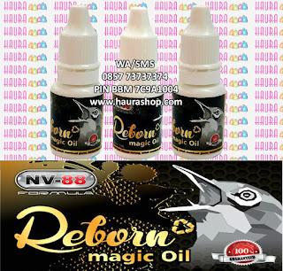 Reborn Magic Oil (RMO) adalah produk suplemen berkualitas dari NV88 yang sudah terbukti khasiatnya mampu meningkatkan kinerja burung pleci di arena lomba