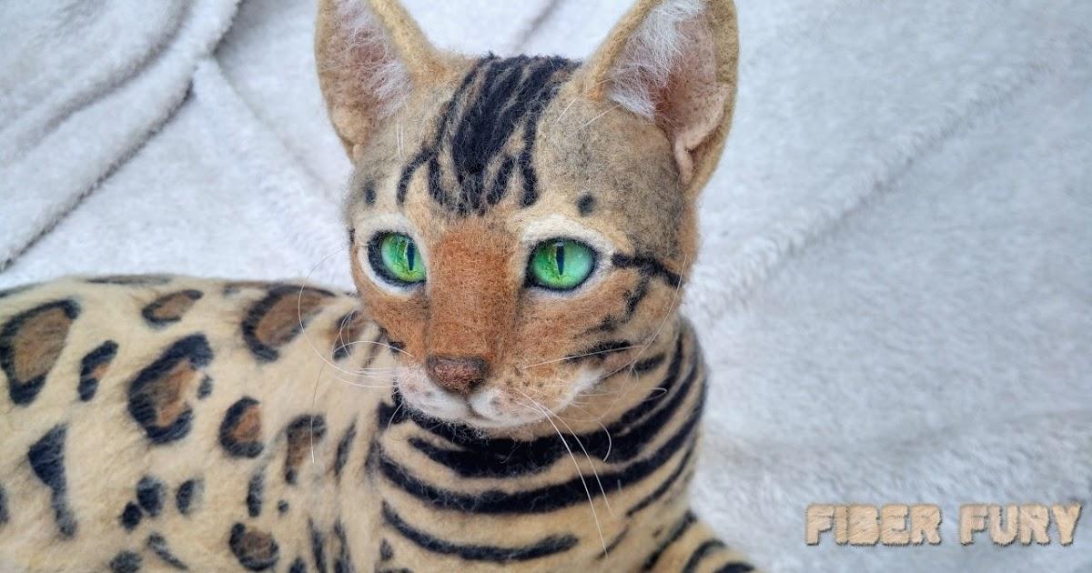 Świeże Fiber fury : Kot bengalski / Bengal cat NP84
