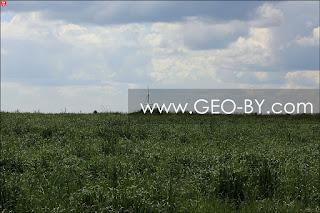 Геодезический знак между деревнями Большое Беляково и Плашево