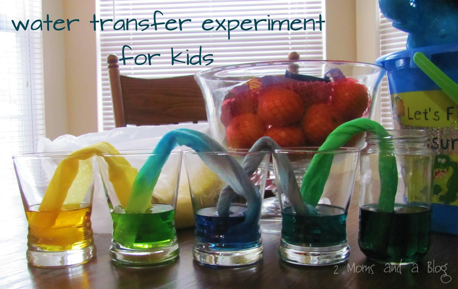 moms and a blog towel transfer science experiment for