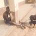 Edge Nigeria:Teenager caught having sex with a sheep in Enugu (photo)