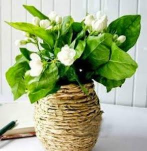 http://translate.googleusercontent.com/translate_c?depth=1&hl=es&rurl=translate.google.es&sl=en&tl=es&u=http://goodhomediy.com/diy-kraft-paper-decorated-flower-vase/&usg=ALkJrhg2lsjKSHmOV8te4-YiwZQYYdOI9g