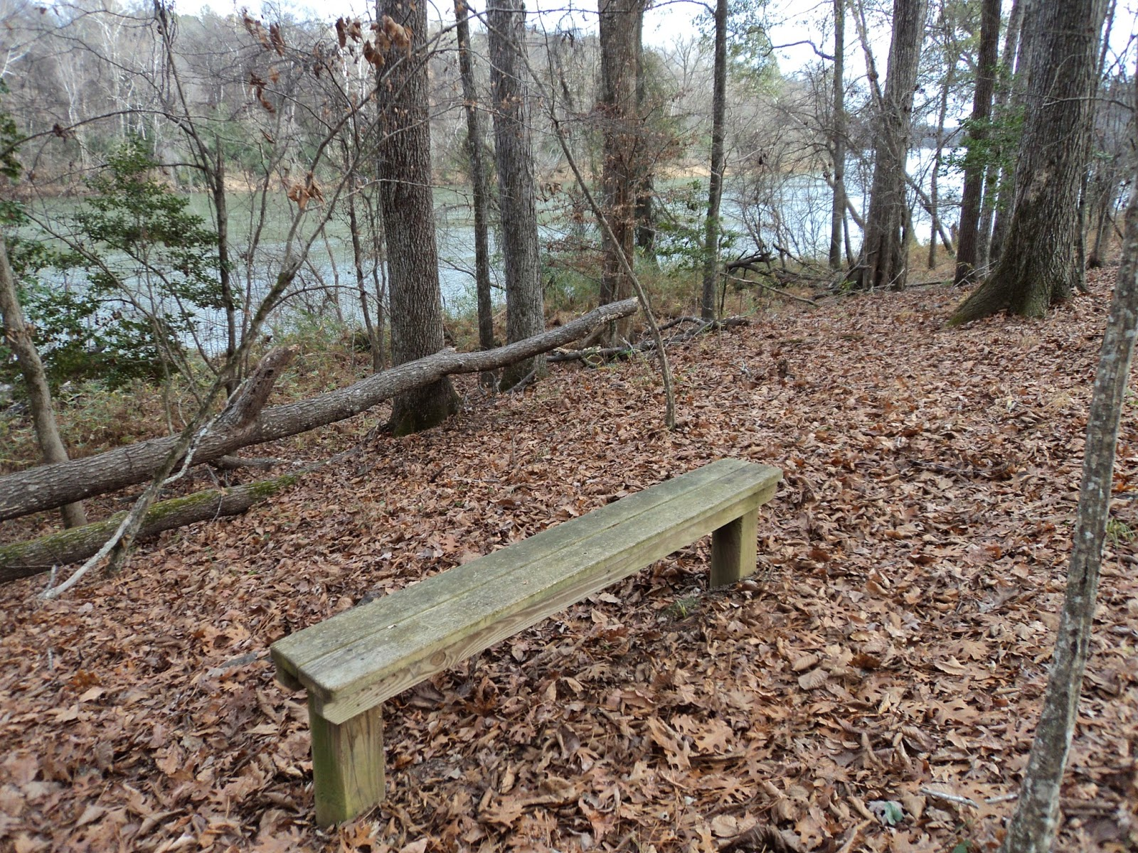 Mathprofhiker's Trail Journal: Harbison State Forest