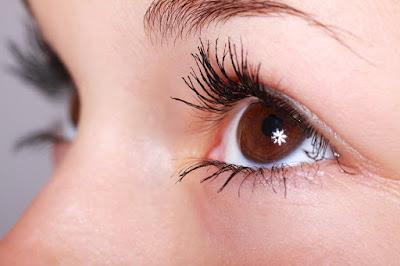 Manfaat daun kelor sangat baik untuk kesehatan mata