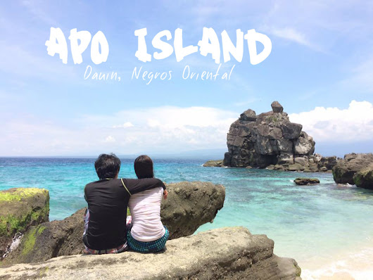 Apo Island: How to go and the things you need to know | The Local Wanderer