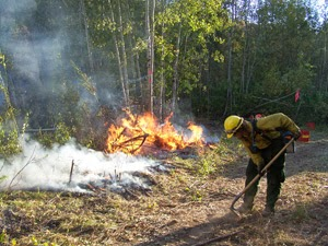 Areas hit by wildfire are at risk for flood damage � are you covered?