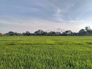 Pilihan Hotel Di Yogyakarta Yang Punya Lokasi Strategis