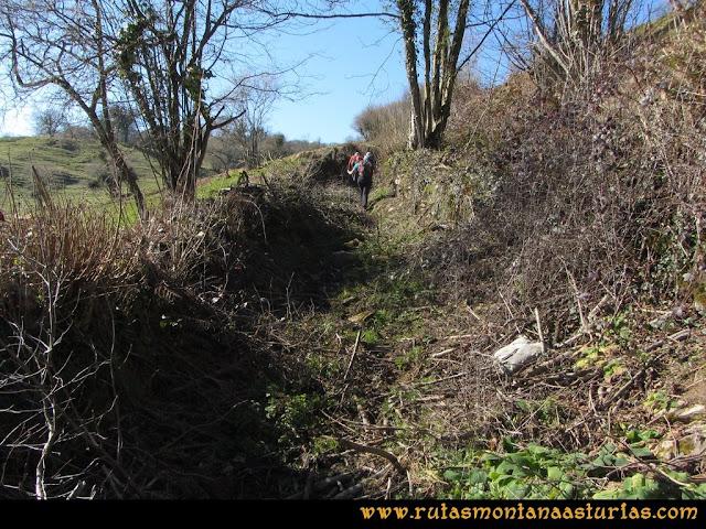 Ruta Linares, La Loral, Buey Muerto, Cuevallagar: Subiendo a la Campa Las Veigas