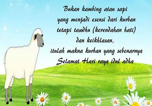 Image Result For Cerita Nabi Ibrahim Dan Ismail Tentang Qurban