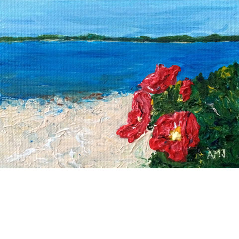 "Wild roses at Sandy Cove- 5""x7"" Art card"