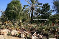 ישראל בתמונות (תל אביב): פארק הירקון - פארק גני יהושע
