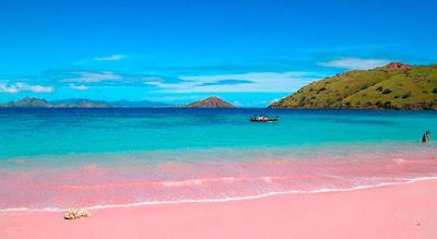 A l'île Harbours Pink Sand Beach est l'une des 7 plus belles plages des Bahamas à visiter.