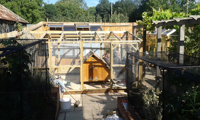 Chicken run before roof put on
