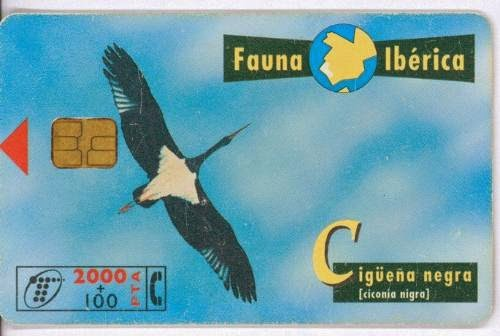 Tarjeta telefónica Cigüeña negra (Ciconia nigra)