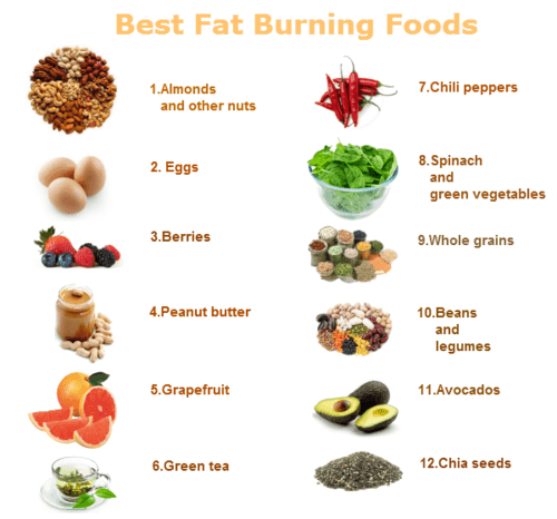 best fat burning foods!