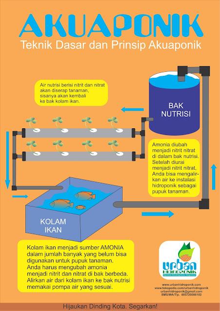 urban hidroponik, urban farming indonesia, pelatihan hidroponik