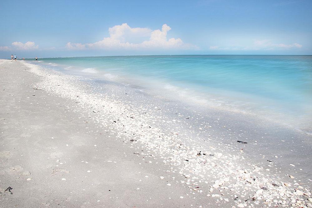 The Ultimate Florida Bucket List