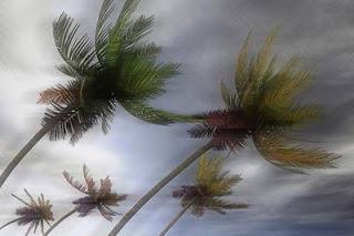 Doa Ketika Ada Angin Kencang Bertiup Sesuai Sunnah Beserta Artinya