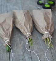 como secar as ervas