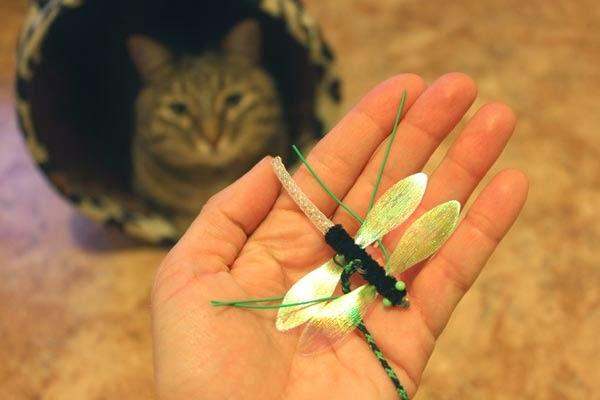 игрушки для кошек картинки