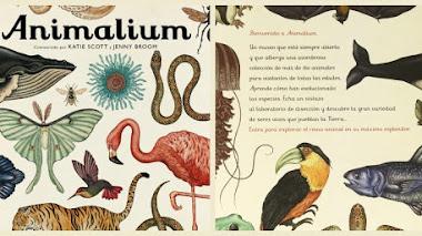 La naturaleza, los libros y los niños: Animalium, casi un museo