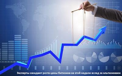 Эксперты ожидают роста цены биткоина на этой неделе вслед за альткоинами