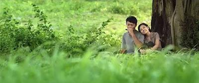Harmonica Tabs - Thằng cuội (OST Tôi thấy hoa vàng trên cỏ xanh)