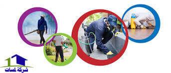 شركة مكافحة حشرات بالطائف , رش مبيدات