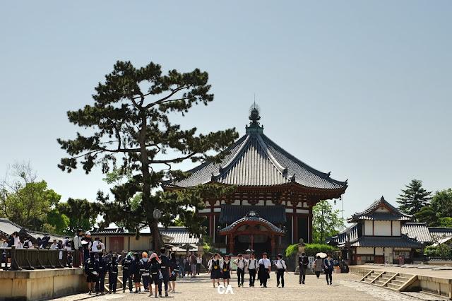 Kofukui-ji Temple Nara Japan Curitan Aqalili
