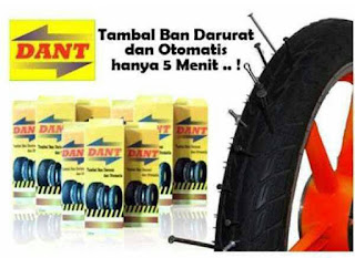 DANT Tire Guard