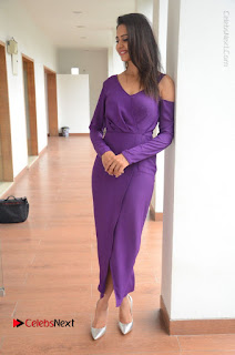 Actress Rakul Preet Singh Latest Stills in Beautiful Long Dress  0140.JPG