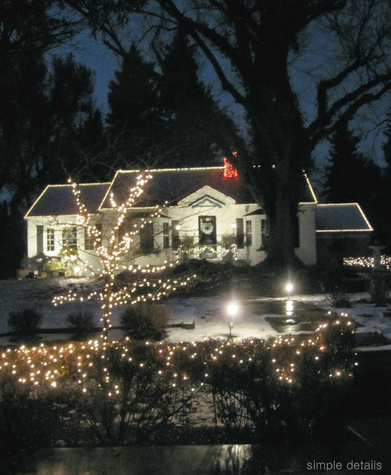 Simple Details Pretty Glow With Outdoor Spotlights