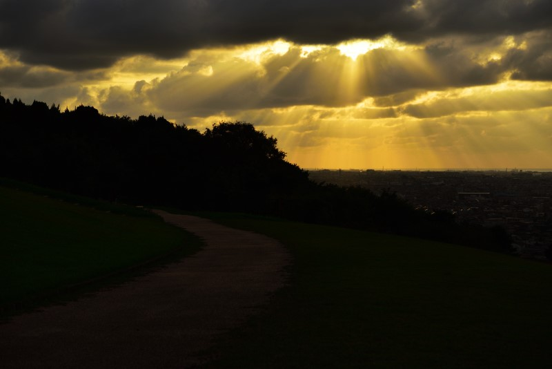 大乗寺丘陵公園の夕景
