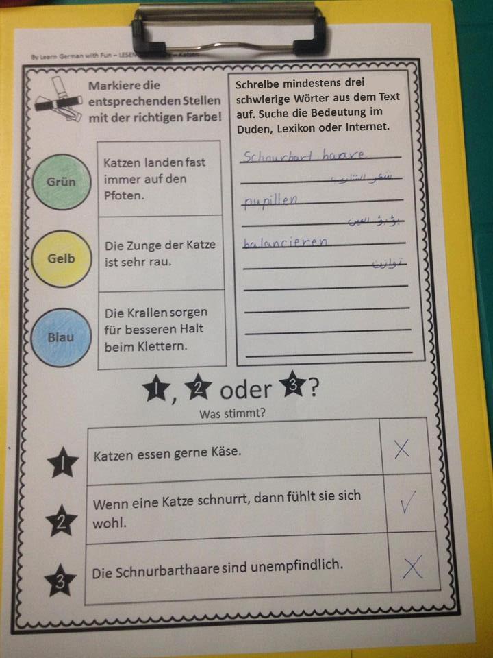Deutsch Lesen üben- Sachtexte mit Leseverständnisfragen - Learn ...