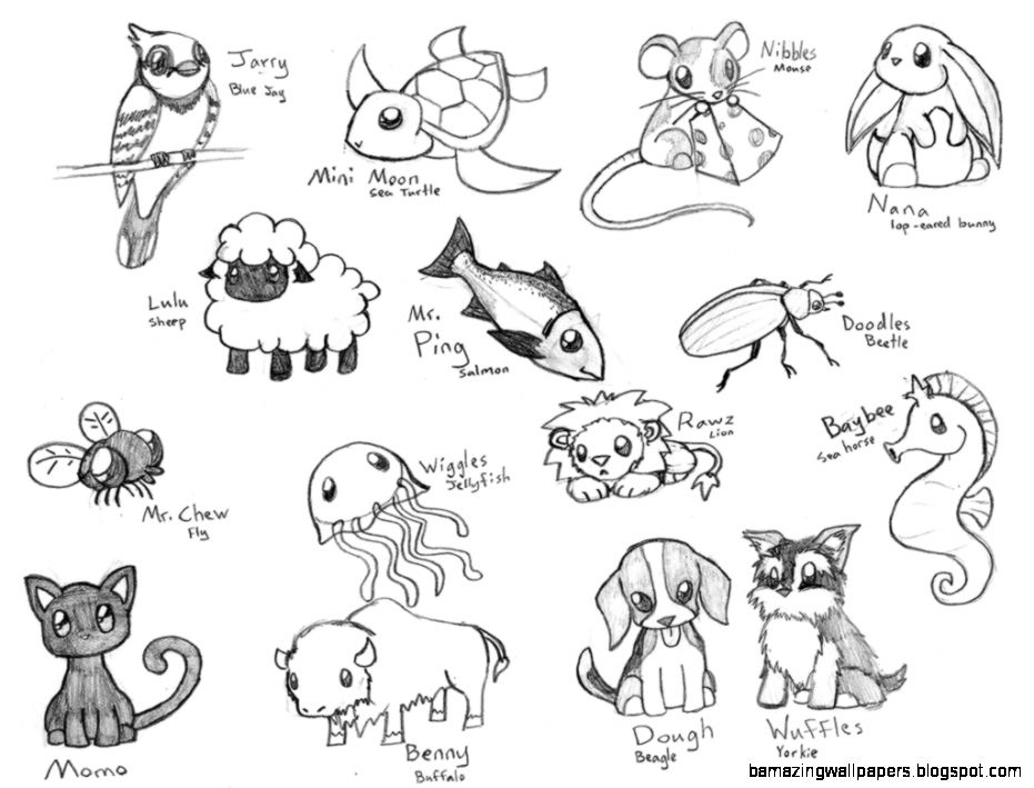 Cute Baby Animal Drawings In Pencil Amazing Wallpapers
