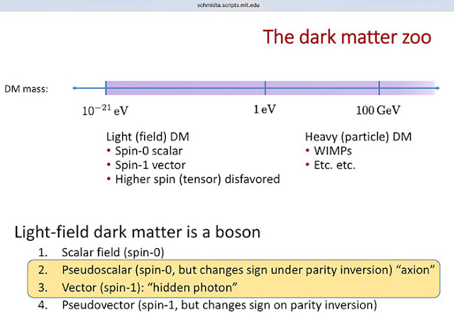 The Dark Matter Zoo (Source: schmidta.scripts.mit.edu)